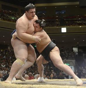Борцы сумо в схватке