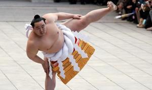 Типичный представитель сумо